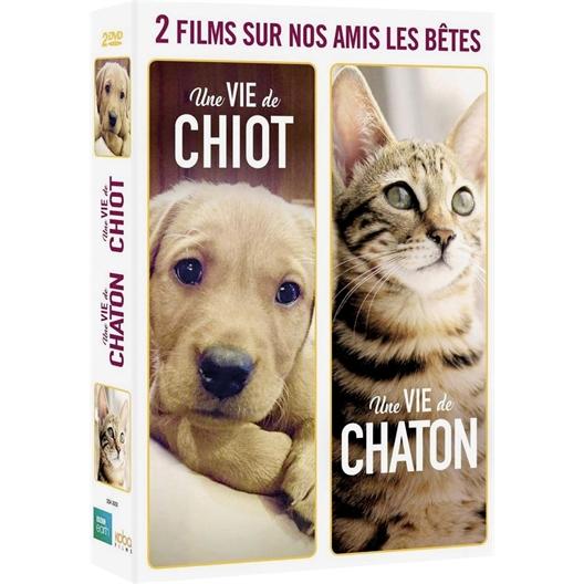 Une Vie de Chiot et de Chaton