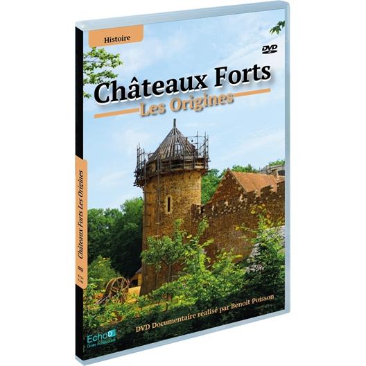 Châteaux-forts : les origines